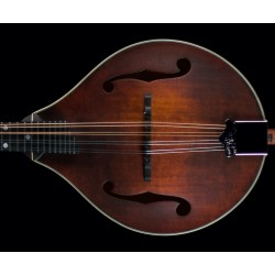 Eastman MD 305 Lefty with bag